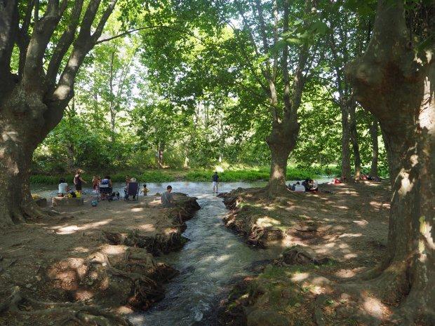 Les sources du Lez - Summer 2015
